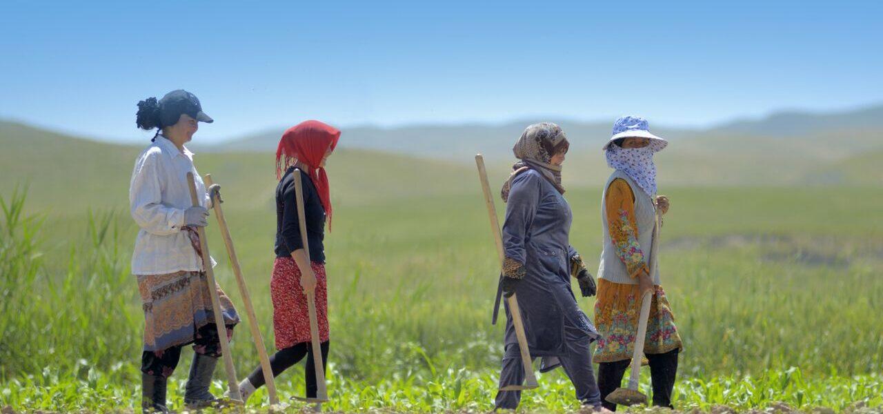 Woman Farmers walking in field